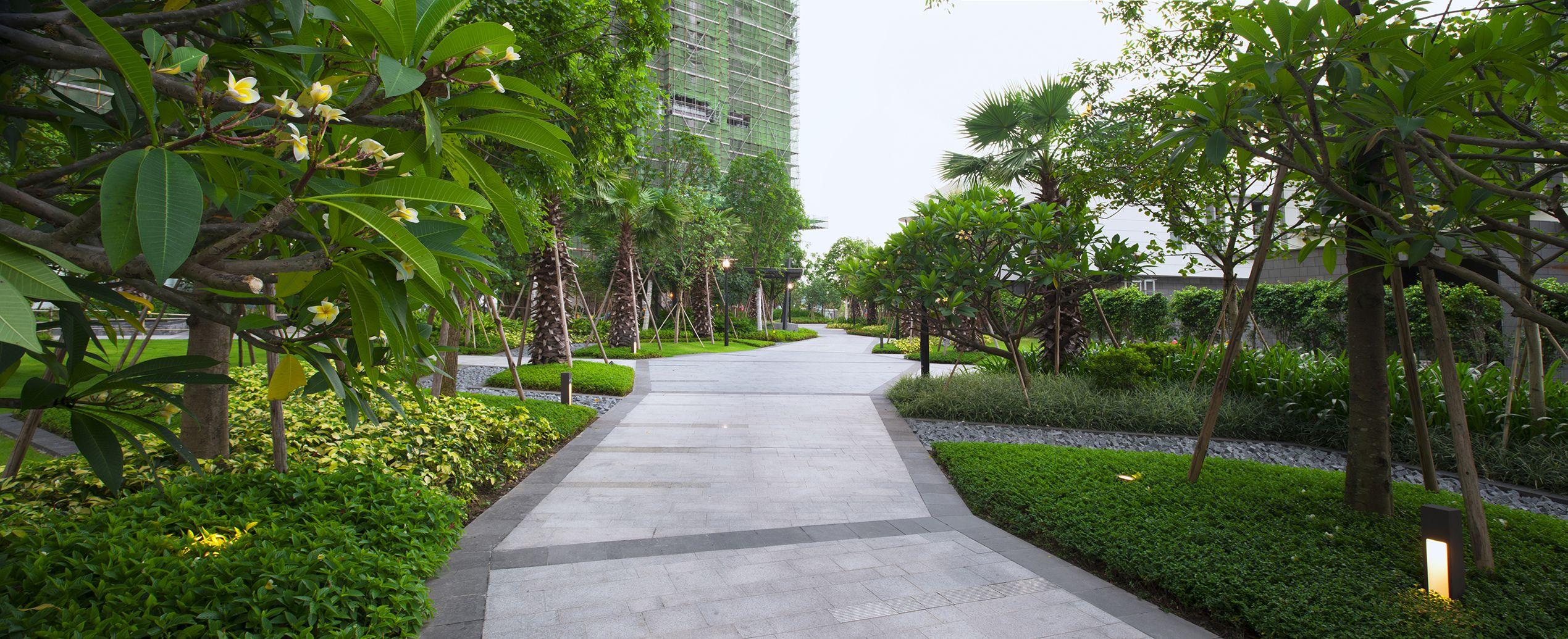 Contemporary Landscape In Asia Urban Park Quintin Davidson Contemporary Landscape Landscape Design Landscape