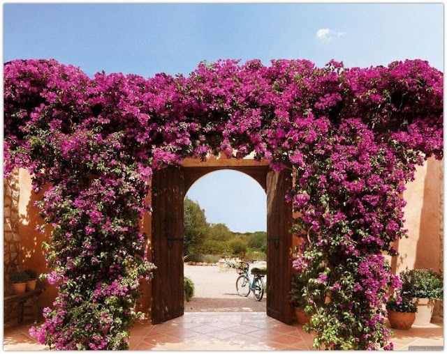 Art Symphony: An amazing house in Mallorca