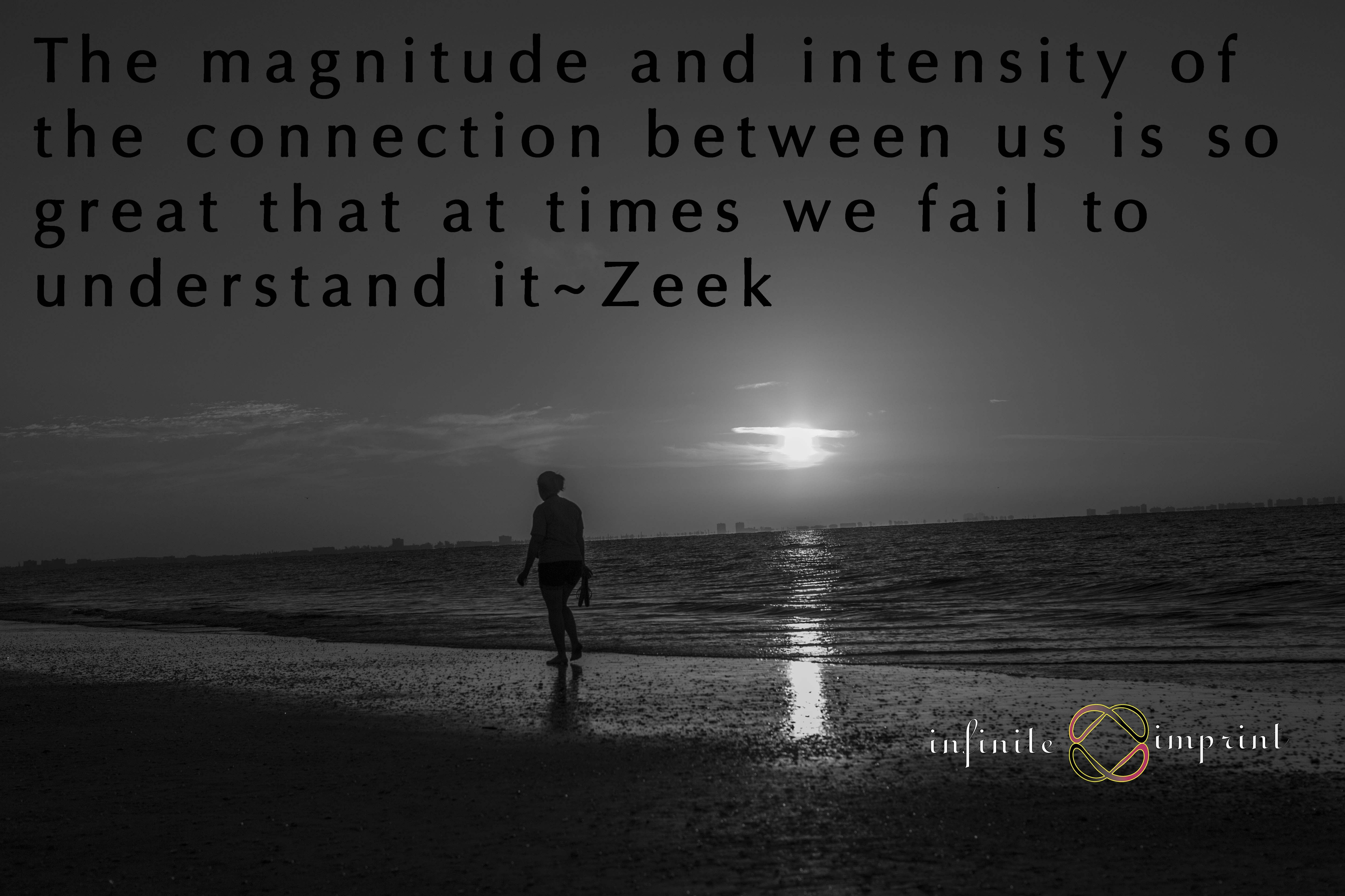 The magnitude and intensity of the connection between us is so great that at times we fail to understand it~Zeek