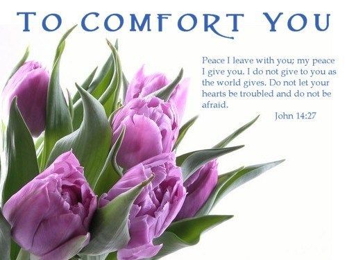 John 14:27 Peace I leave with you; my peace I give you. I do not give to you as the world gives. Do not let your hearts be troubles and do not be afraid.