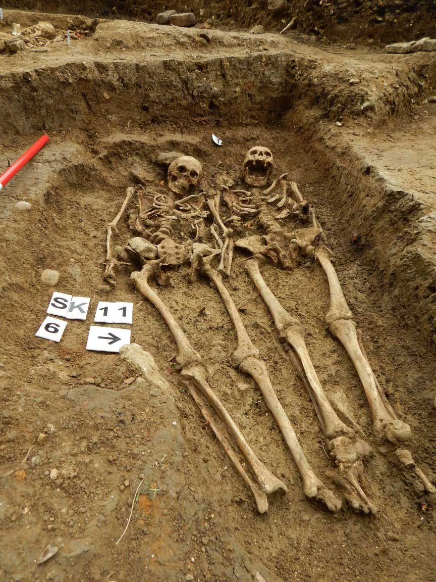 Giant Human Skeleton U...