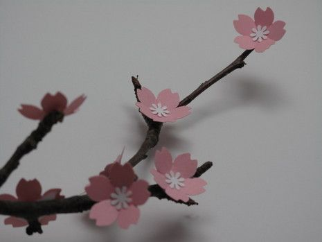 How To Make A Branch Of Paper Cherry Blossoms Paper Flowers Diy Wedding Paper Flowers Diy Cherry Blossom Party