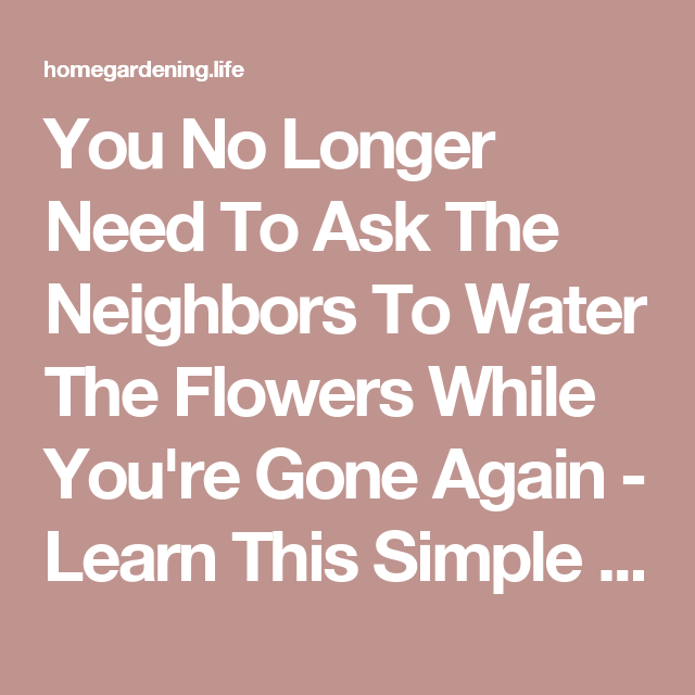 You No Longer Need To Ask The Neighbors To Water The Flowers While You're Gone Again - Learn This Simple Trick And You Could last For To 2 Weeks Up!