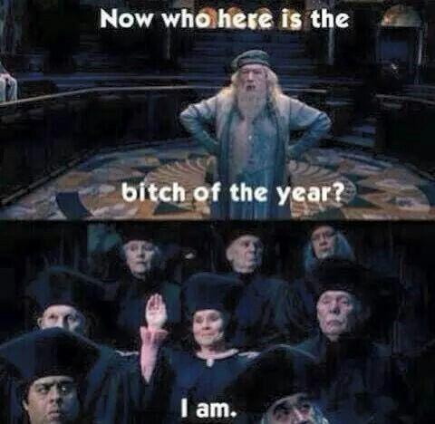 Yes You Are Harry Potter Lustig Harry Potter World Harry Potter Humor
