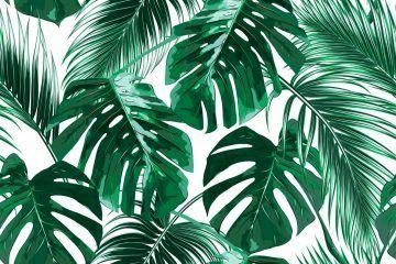 tropisch behangpapier interieur | Muurdecoratie | Pinterest