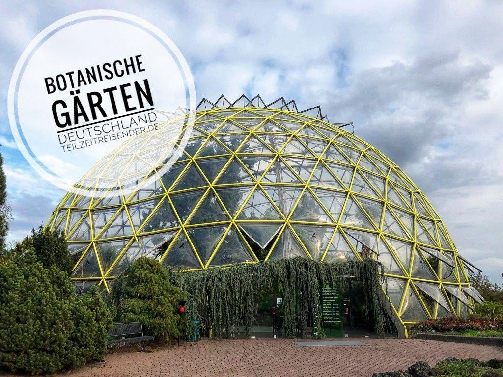 Entdeckt Ideale Platze Zum Erholen Botanische Garten Botanischer Garten Garten Gewachs