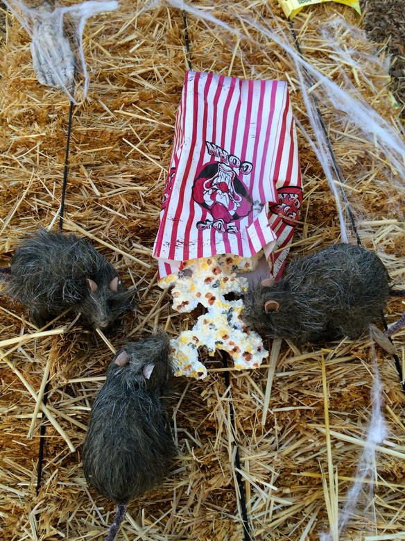 Halloween rats in the popcorn idea/photo HF member art Pinterest - halloween party decorations for adults