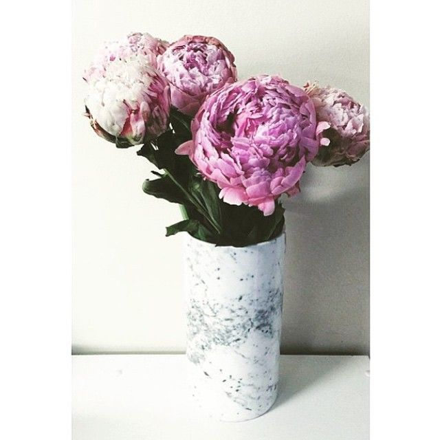 Peonies & marble #LisaTforTarget canister!