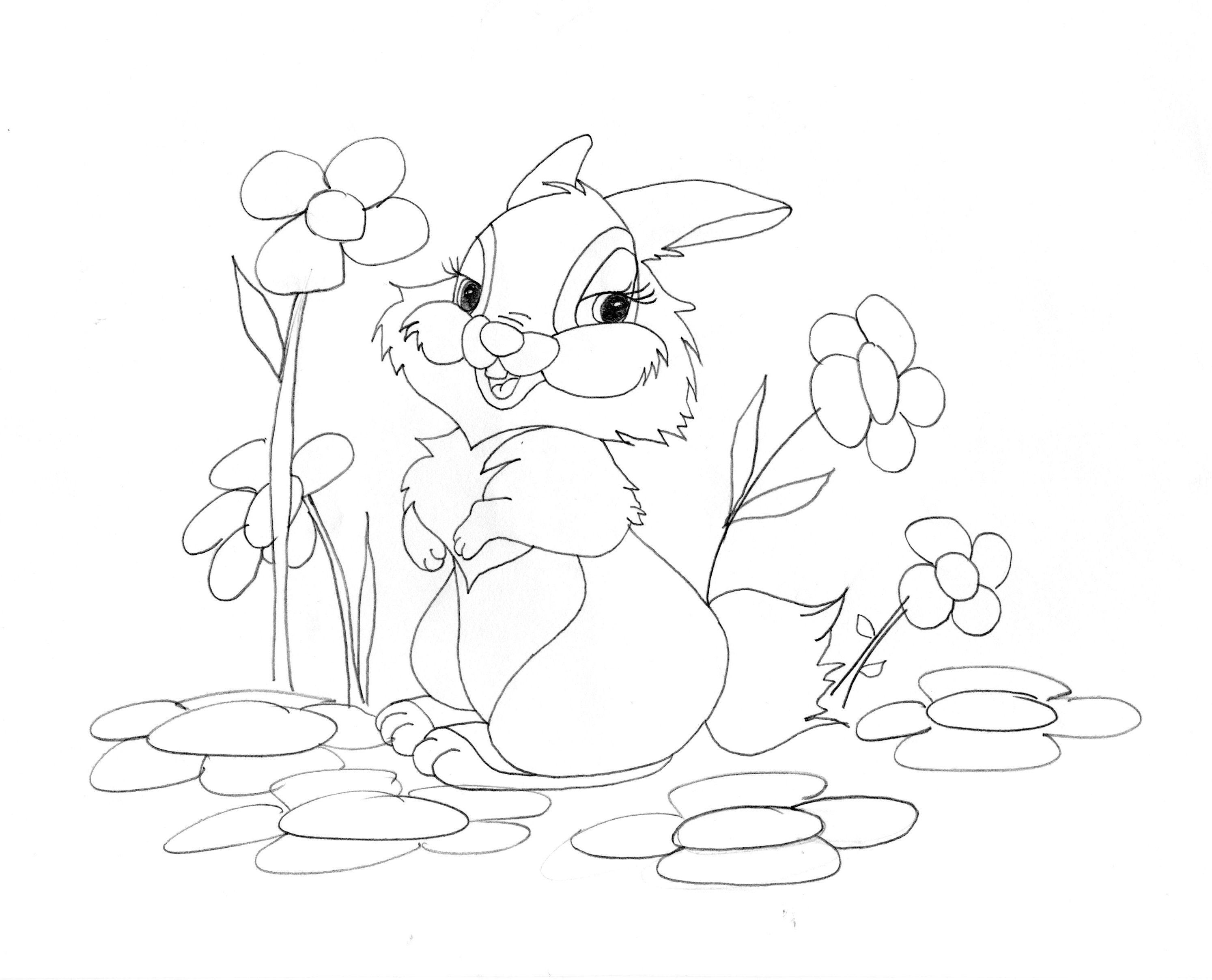 La novia de Tambor. #Disney #Bambi #Tambor   Dibujos para colorear ...