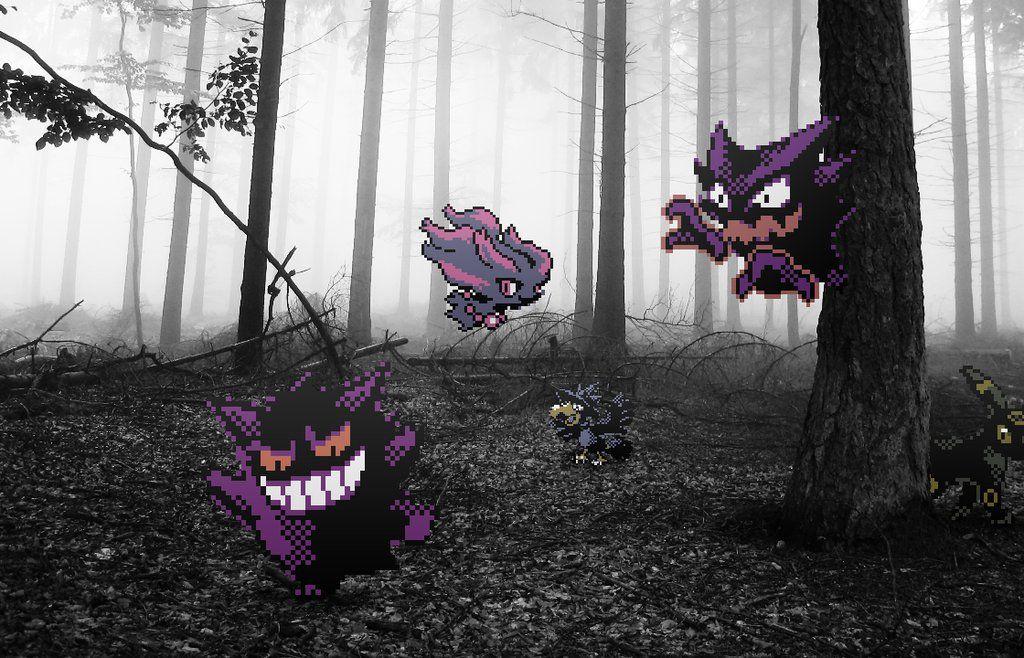Pokemon Photography - Imgur