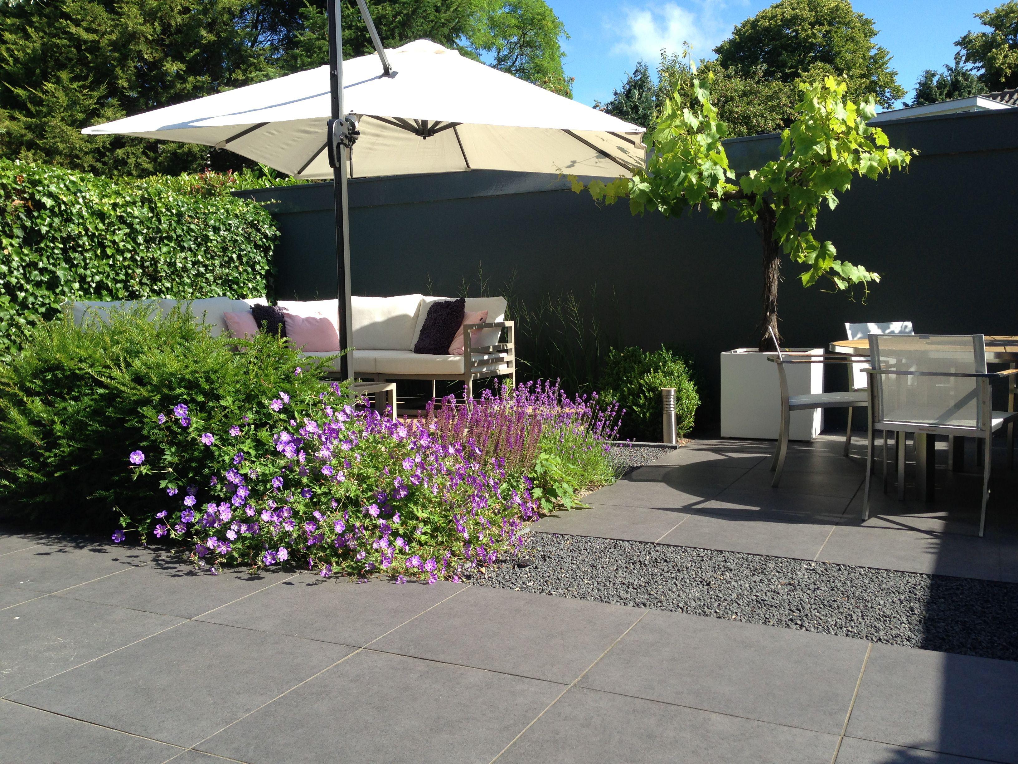 Moderne tuin in santpoort tuinontwerp en aanleg door biesot keramiek tegels antraciet split en - Kleine designtuin ...