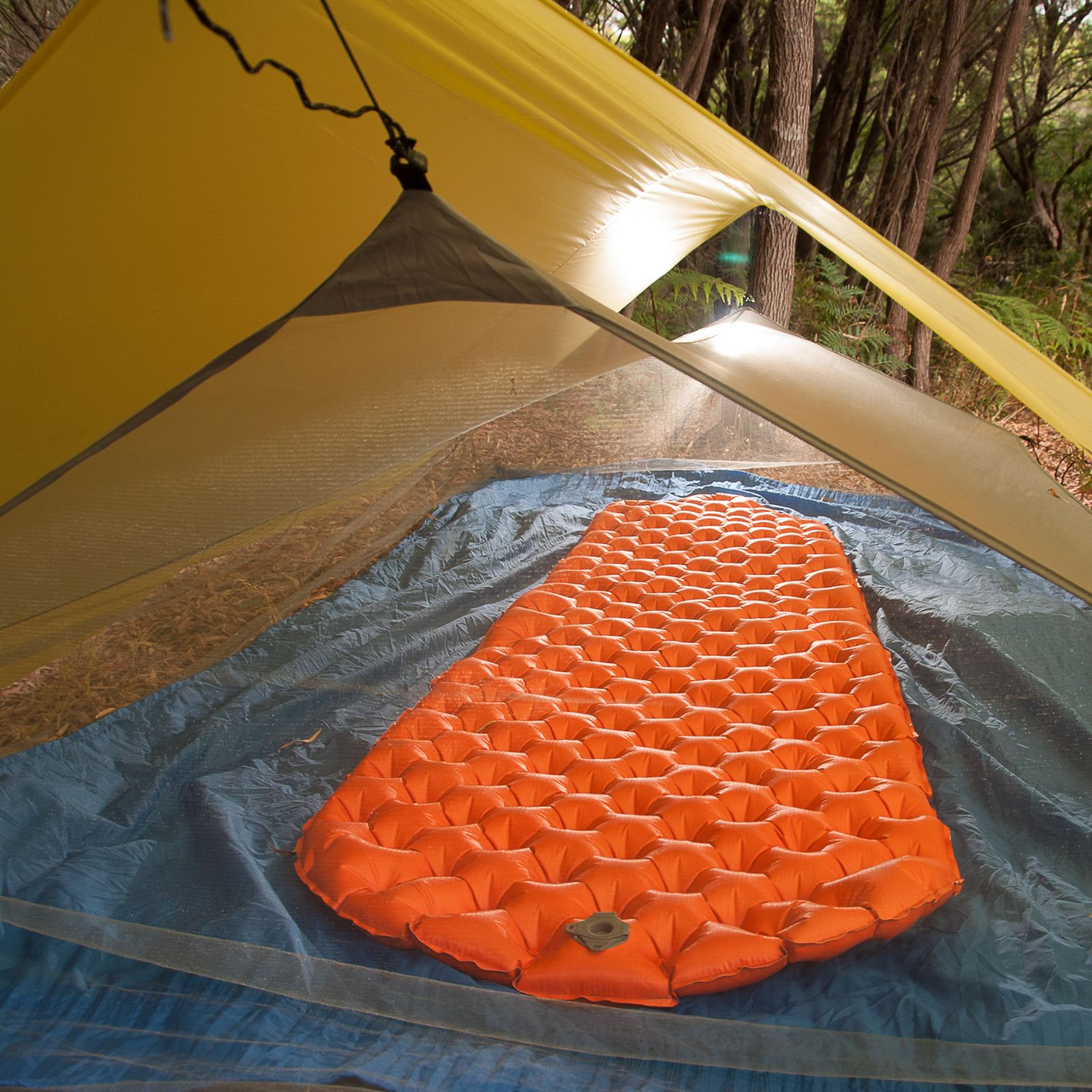 Escapist Inner - Bug Net | Sea to Summit & Escapist Inner - Bug Net | Sea to Summit | 2015 Hiking and Camping ...
