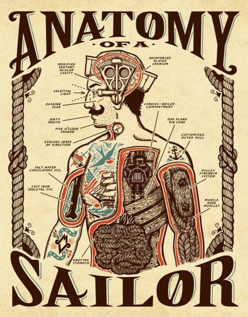 old school anatomy of a sailor tattoo poster not really accurate