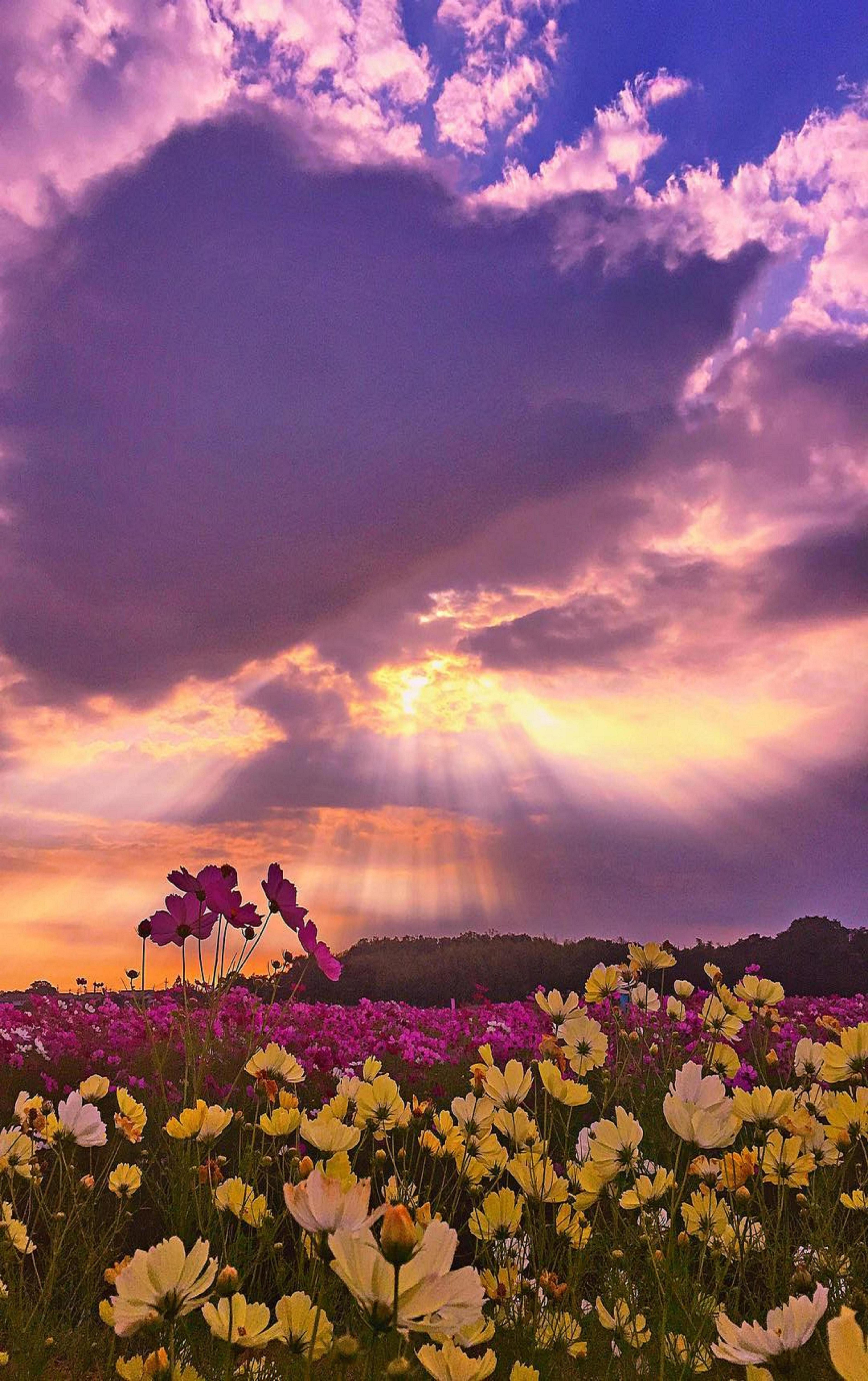 Pin By Maureen Pline On Sunset Beautiful Nature Nature Pictures Scenery Pictures