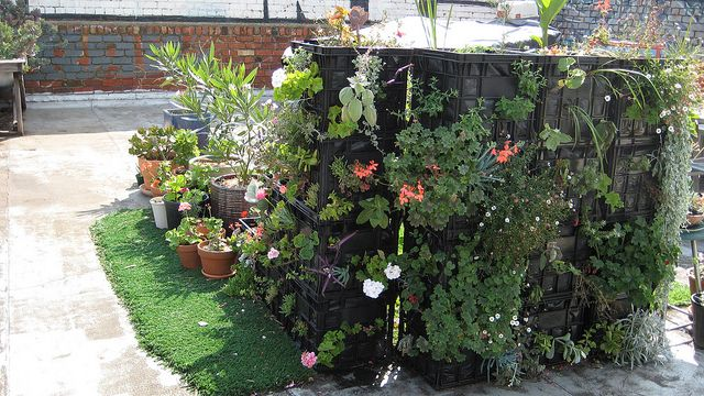Milk Crate Garden Vertical Vegetable Gardens Garden Beds Garden Projects