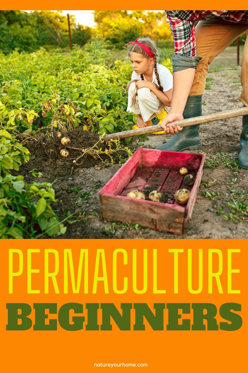 What is permaculture? How to start a permaculture jardin? Discover the permaculture principles and more! #natureyourhome#selfsustaininggarden#growingvegetable#permaculturejardin#vegetablegarden