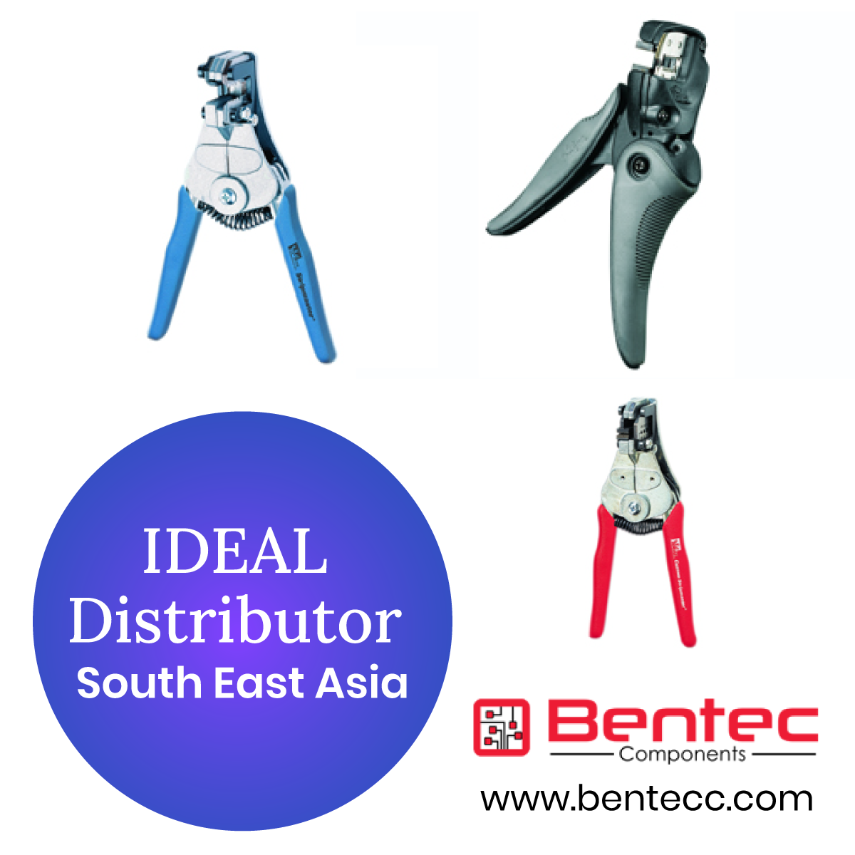 IDEAL Distributor in South East Asia in 2020 Southeast