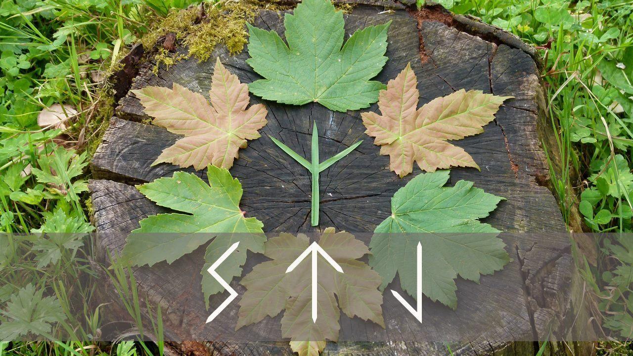 Survive the Jive is creating Videos   Heathen   Runes, Wicca