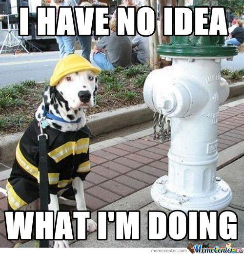2454c3ce94b2d65213a4cf97e233514e firefighter funny pics google search fire fighter pinterest