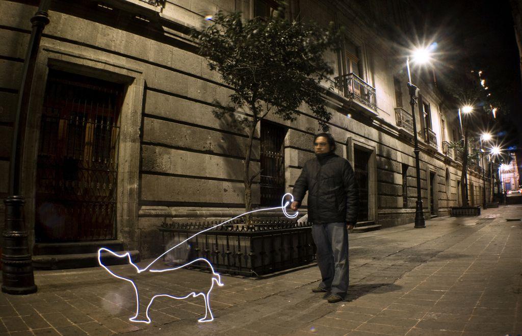 Perro Luz | por Eneas