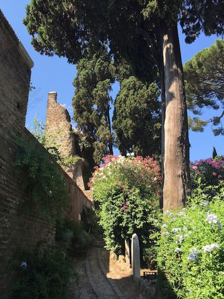 #receitaitaliana #ceuderoma #cielodiroma #romansky #ceu #sky #cielo #italia #italy #roma #rome #beleza #beauty #bellezza #charme #charm #cimitero #cemiterio #cemitery #cimiteroacattolico #jardim #flor #garden #flower #giardino #fiore