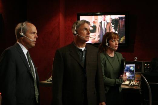 Hostující Joe Spano (agent FBI Tobias C. Fornell), 3 - 8. V utajení