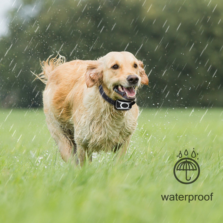 Handsam Bark Collar Rechargeable Dog Barking Control Training
