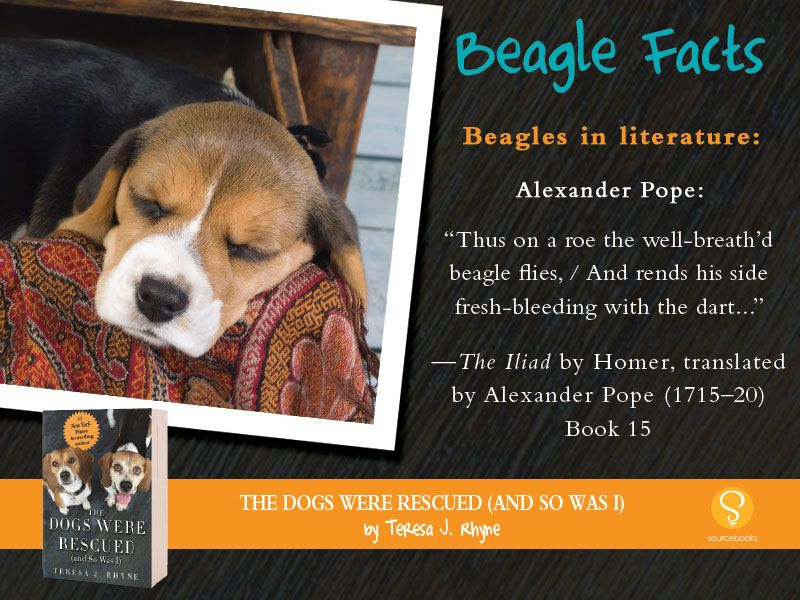 Beagles In Literature Beaglefacts A Portion Of The Proceeds From