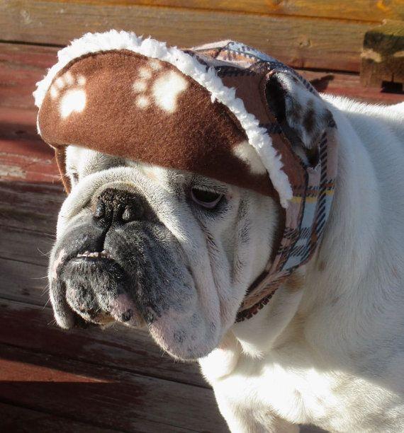 English Bulldog Reversible Hat Funny Dog Hat Fall Winter Hat