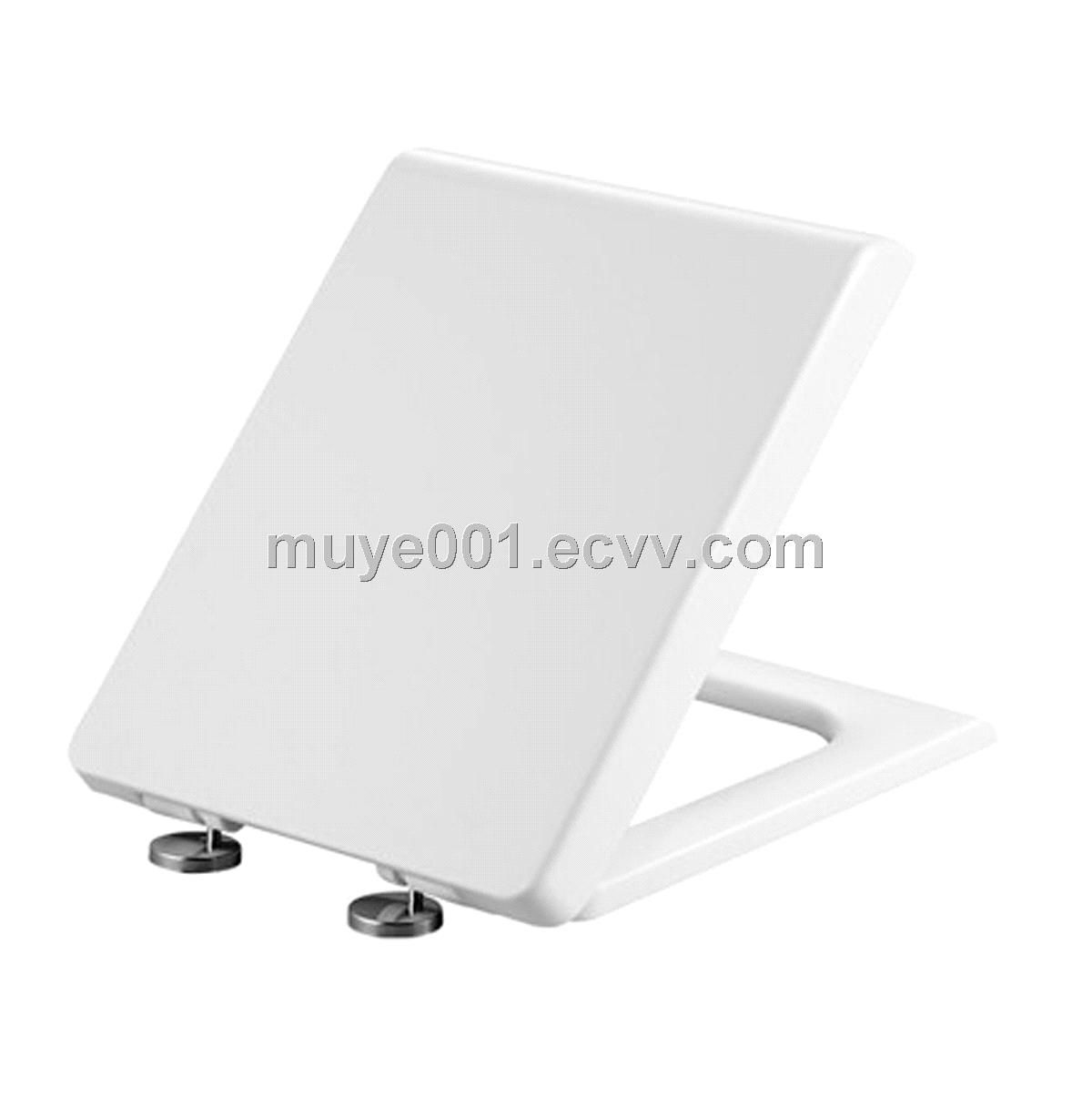 Pleasing Square Stainless Steel Hinge Soft Close Toilet Seats Cover Evergreenethics Interior Chair Design Evergreenethicsorg