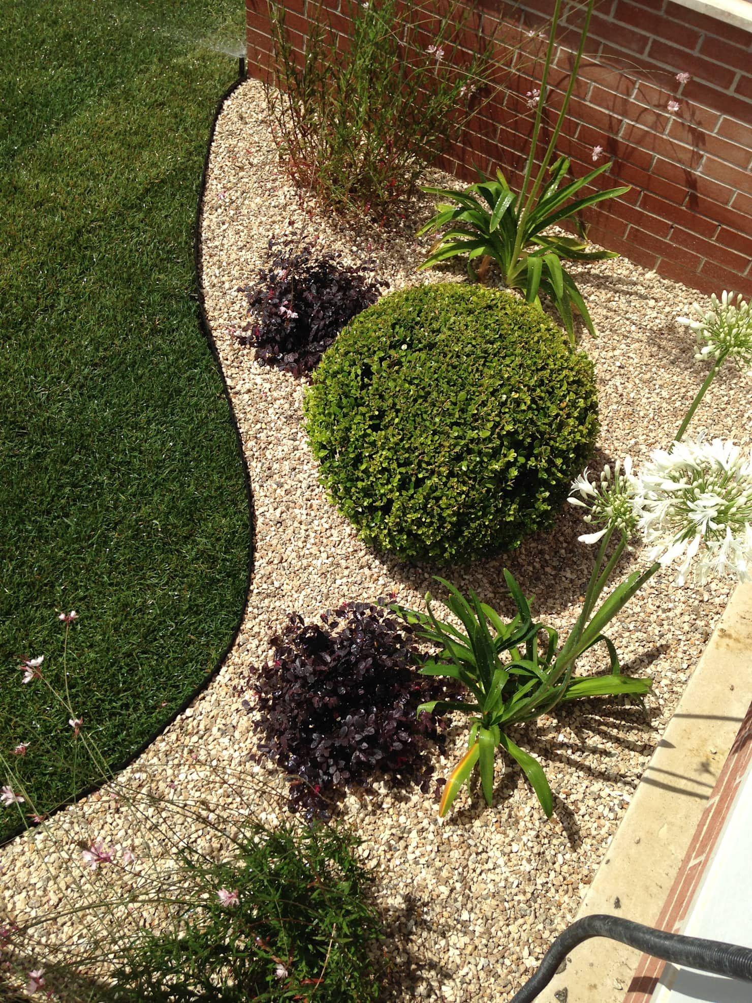 Un Giardino Mediterraneo Giardino Roccioso In Stile Di