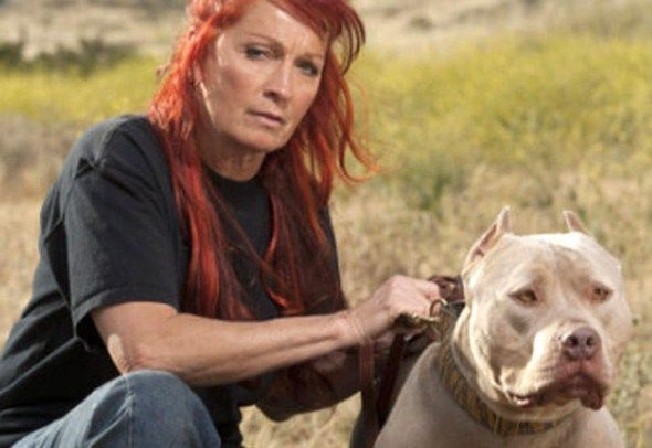 Animal Planet has renewed Pit Bulls & Parolees for another season.  Are you a fan of this series?