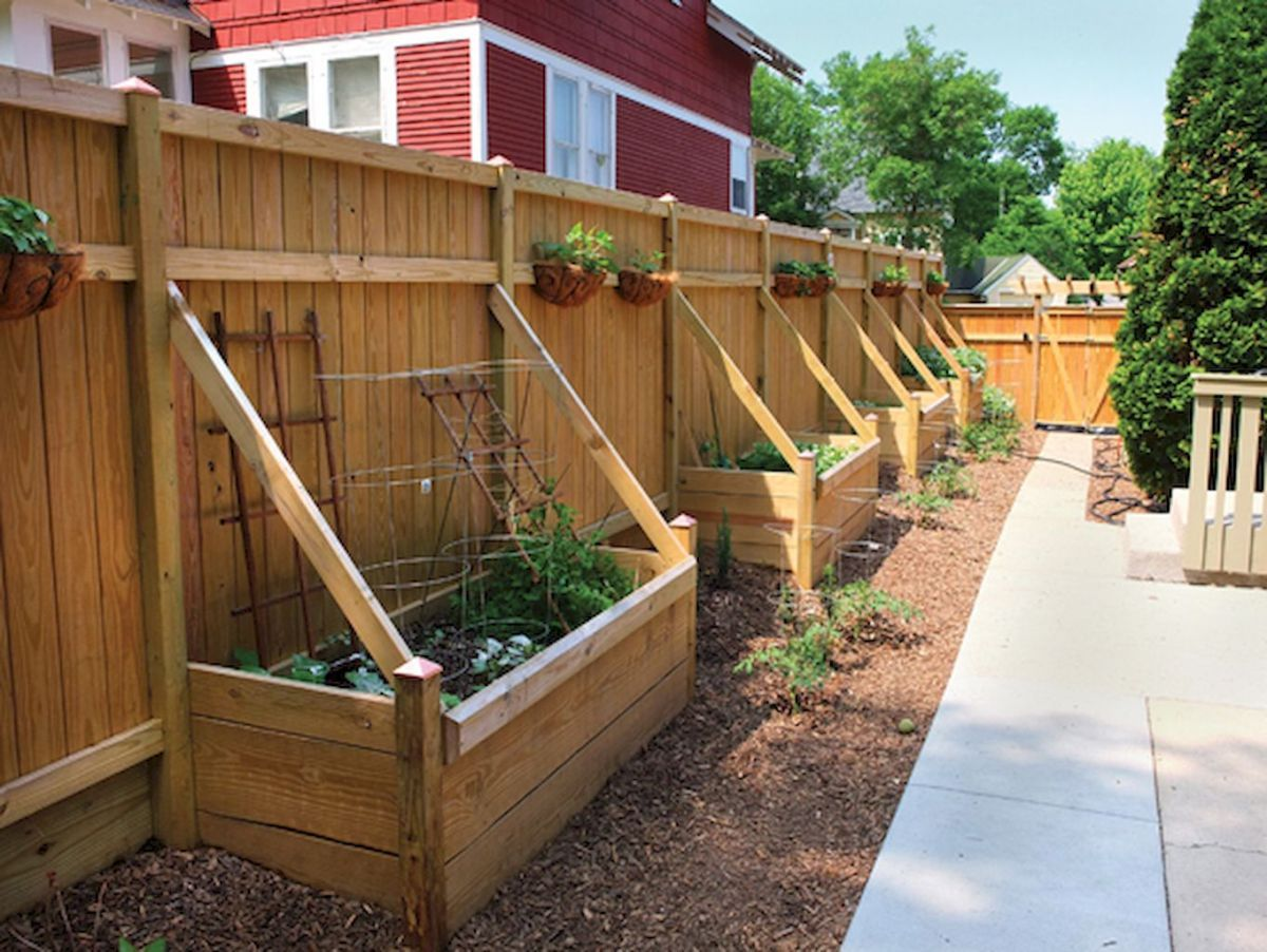 Backyard privacy fence landscaping ideas on a budget (39 ...