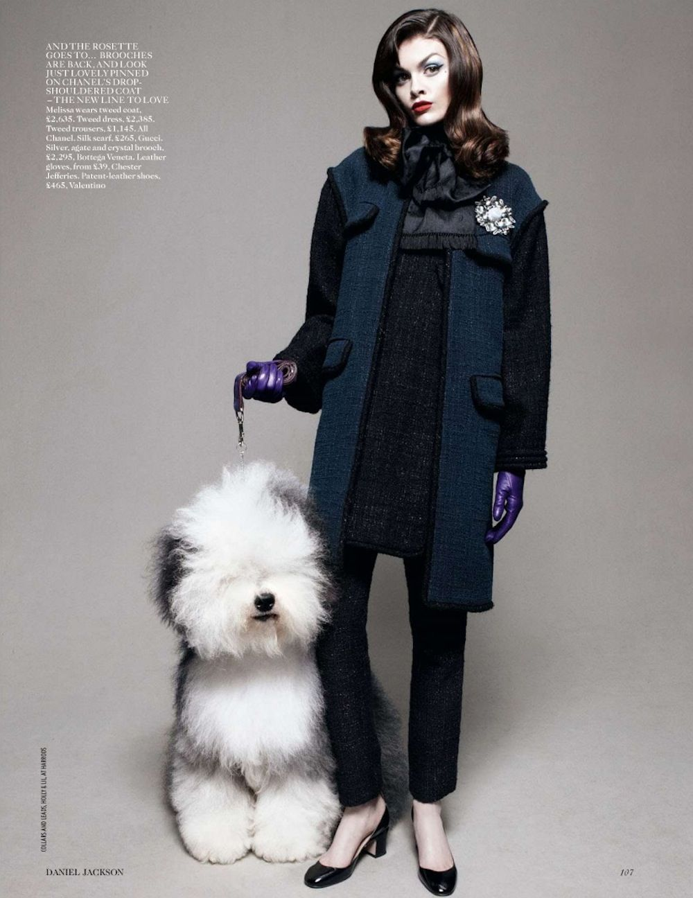 d6eba5e0c Best in Show | UK Vogue, August 2012 | eye candy | Pet fashion ...