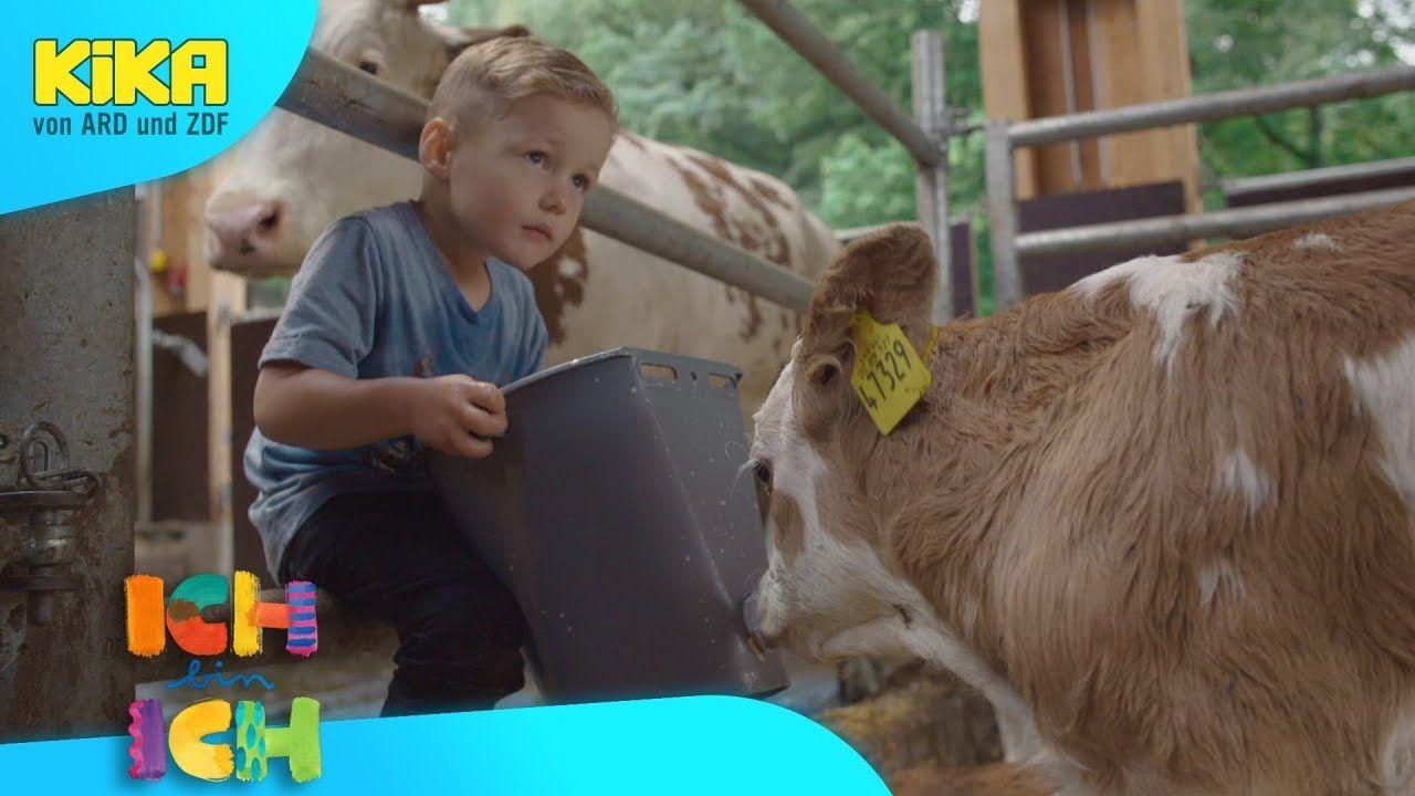 ICH bin ICH Luis füttert die Tiere Mehr auf KiKA.de
