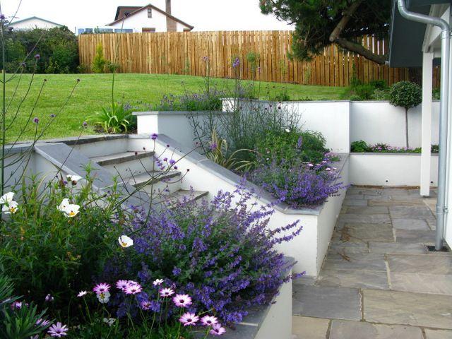 Garden Design By Cornwall Designer Based In Falmouth Coastal Contemporary Garden Garden Design Layout Modern Contemporary Garden Garden Design Layout