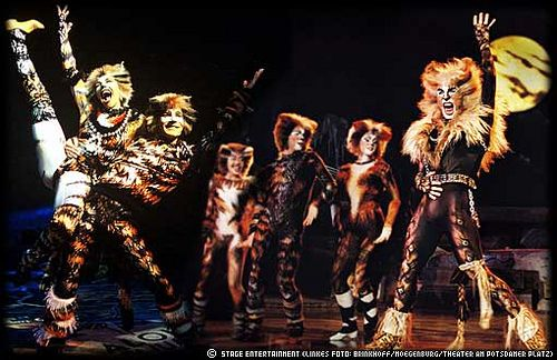 Cats Musicals Cats Musical Cats Broadway Show