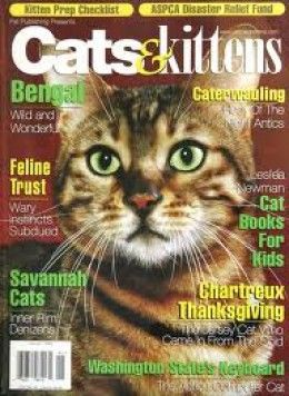 Kittens Usa Magazine Cover Google Search Cat Books Book And