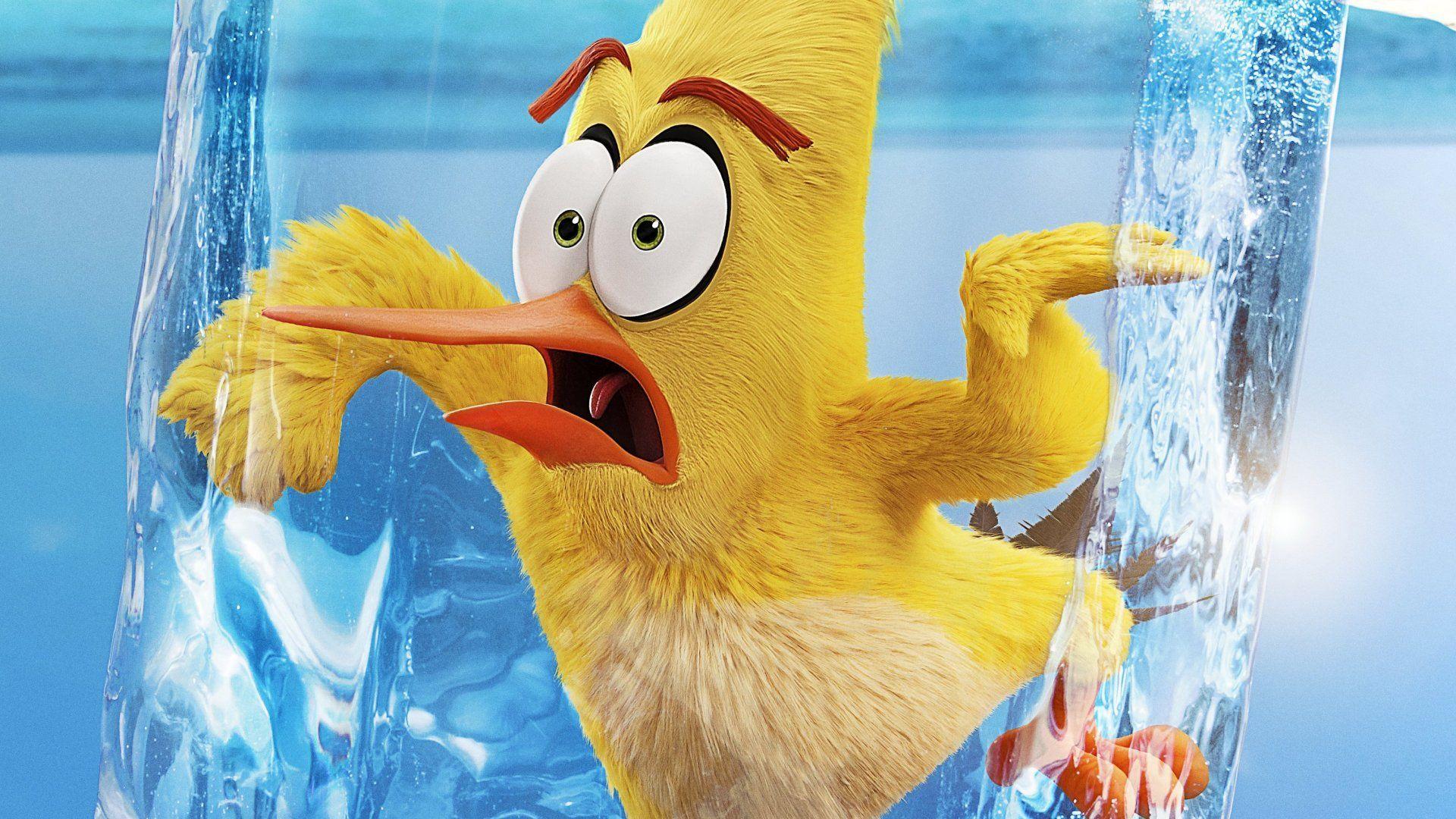 Movie The Angry Birds Movie 2 Wallpaper Angry Birds Peliculas De Animacion Peliculas Nuevas De Disney
