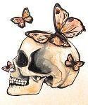 Photo of Schädel und Schmetterling Tattoo – # – Schädel und Schmetterling Tattoo – # – …