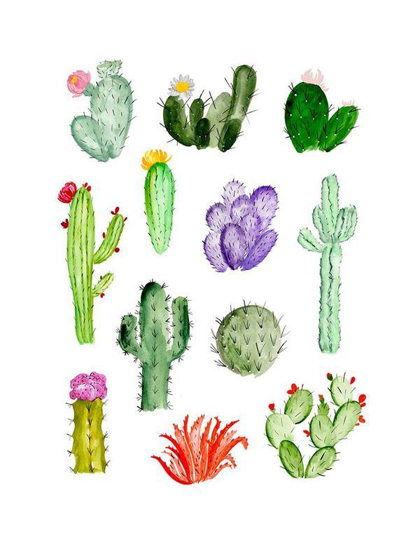 Laminas descargables | Mis. | Pinterest | Acuarela, Arte y Cactus dibujo