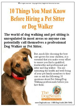 How To Choose A Pet Care Provider Pet Care Pet Sitting Business Pet Sitting