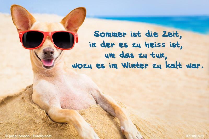 Unser Spruch des Tages!  #Urlaubsreif #travelquotes #Sommer #Winter