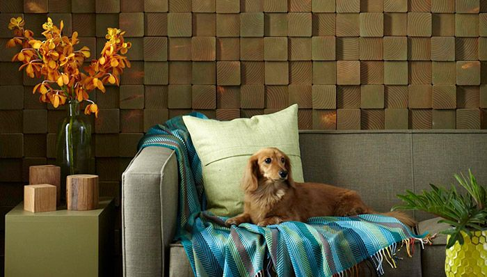 Create An Accent Wall With Shiplap Wood Blocks Wood Accent Wall Diy Wall