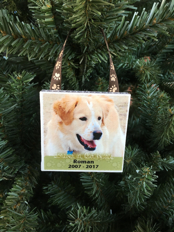 Ornament pet memorial roman personalized photo