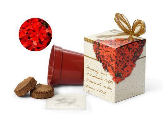 Brandende liefde in een doosje