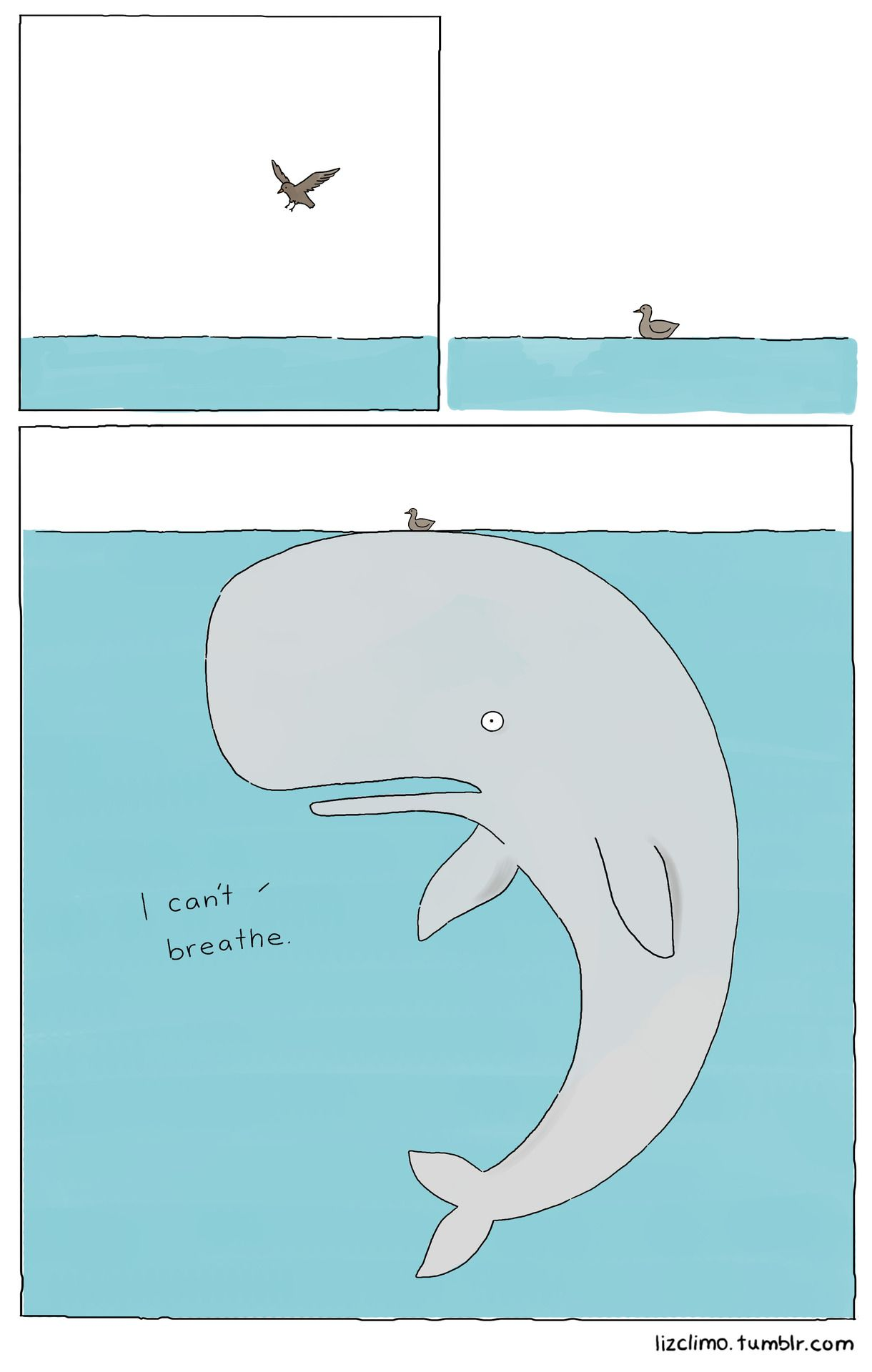 Who Doesnt Love A Good Whale Joke
