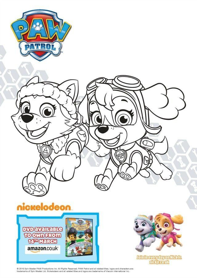 Paw Patrol colouring and activity sheets Pups and the Pirate