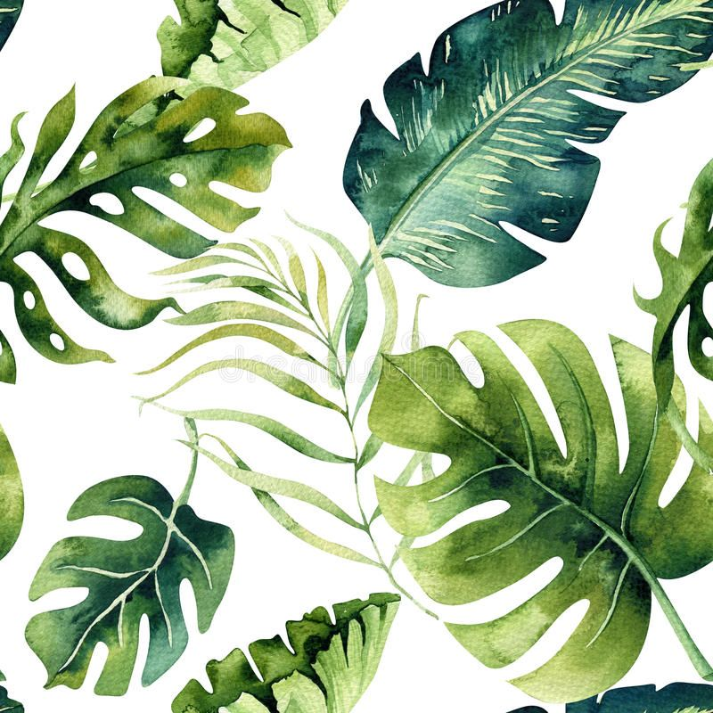 Seamless watercolor pattern of tropical leaves, dense jungle. Ha. Photo about leaf, jungle, plant, natural, modern, texture, brazil, pattern, textile, floral, rainforest - 91780254 #tropicalpattern