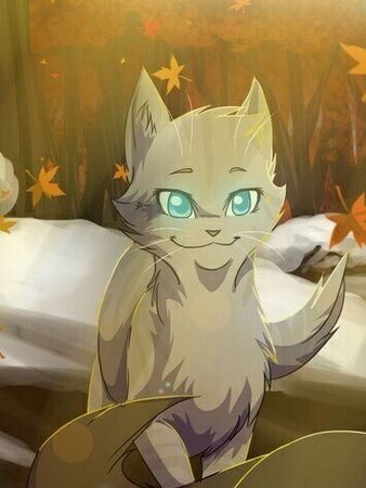 cinderfrost a thunderclan she cat she is friendly and mates with